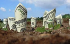 Tiền sử dụng đất phải nộp khi chuyển mục đích sử dụng đất